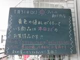 2012/1/31南行徳