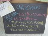 2011/9/20立石