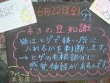 2012/6/22立石