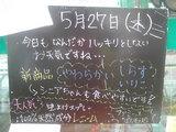2010/5/27立石