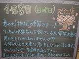 2012/04/08松江