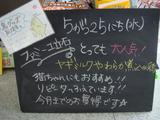 2011/5/25立石