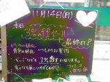 2010/11/14立石
