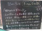 081003松江