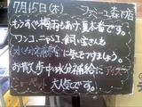 2010/7/15森下