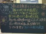 060314松江