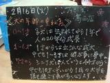 2010/02/16葛西