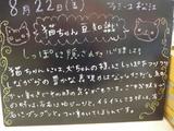 080822松江