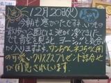 051220南行徳