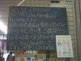 2010/6/30南行徳