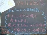 2012/9/11立石