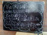 2010/03/30森下