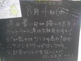 2010/8/4立石
