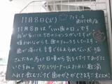 2011/11/8南行徳