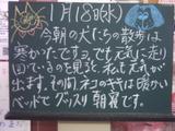 060118南行徳
