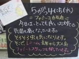 2011/5/4立石