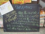 2011/7/5立石