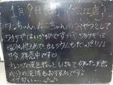 2011/1/9松江