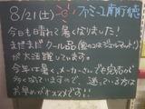 2010/8/21南行徳