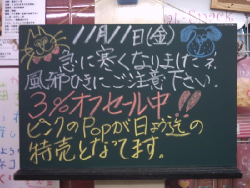 051110南行徳