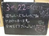 2011/03/22松江