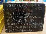 2010/06/08葛西