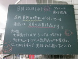 2012/8/22南行徳