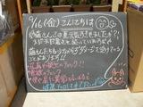 2011/9/16森下