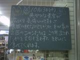 2010/10/13南行徳