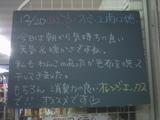 091220南行徳