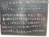 080627松江