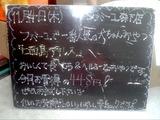 2010/11/4森下