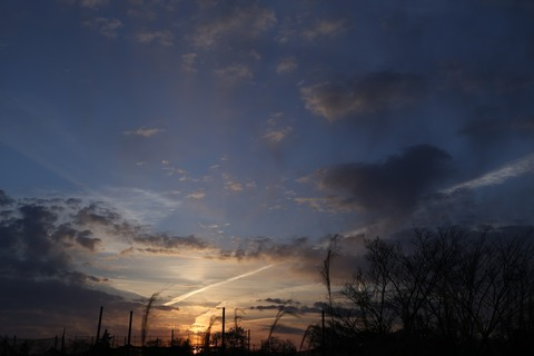 20210214CA1_OTHER_193