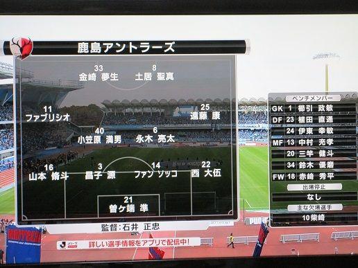 夫婦スポーツ観戦記!                  花ピー&ピースケ