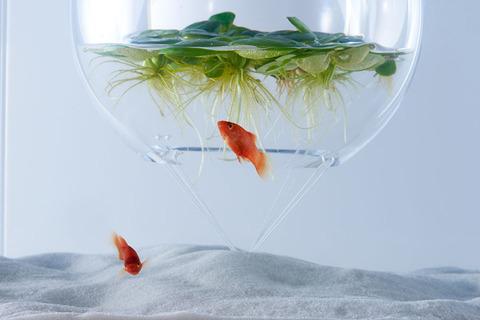 Waterscape-Fish-Tanks-FreshersMag-02
