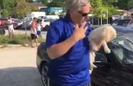 dog-rescued-from-hot-weather-car