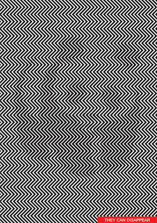 Hidden Panda Illusion