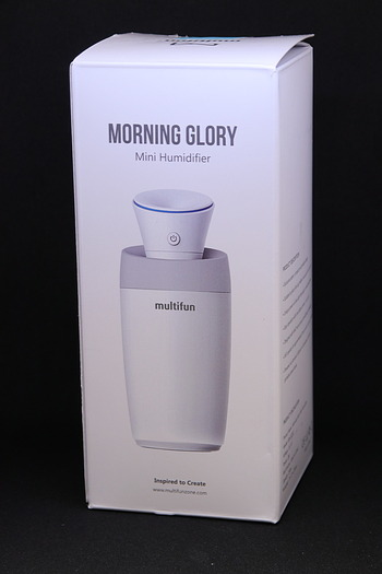 Morninggrory03