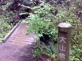 大山橋とコケ