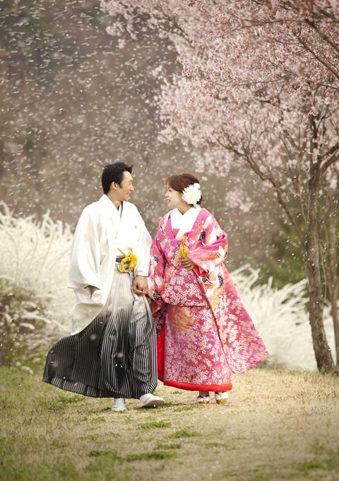 桜ロケフォトジェニック桜の祝福