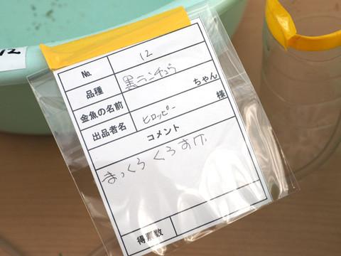 P7200063