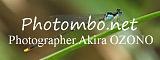 photombo.net