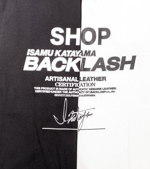 backlash_a_105_01