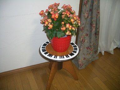2011_0522_132349-CIMG4008