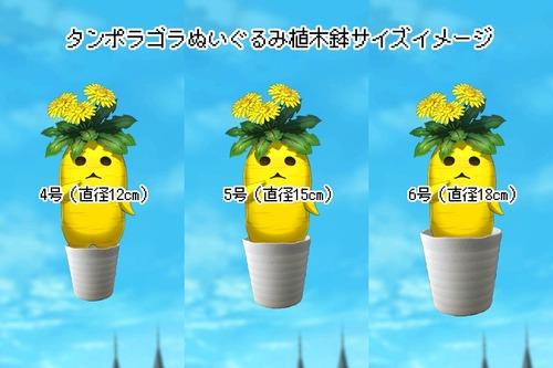 コピータンポラゴラ植木鉢サイズイメージ4・5・6号