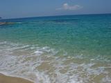 海亀のくる浜