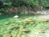 キレイな川