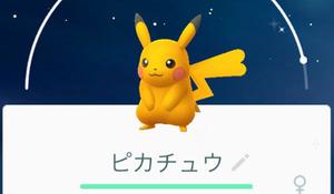 pokemon-go-park-irotigai-pikachu-1