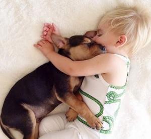犬と一緒に寝る子供