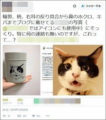 ネコブログの写真を人気ブランドが無断トレース・デザイン盗用か 画像あり